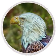 Round Beach Towel featuring the photograph The Eagle Look by Hanny Heim