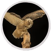 The Eagle-owl Has Landed Round Beach Towel