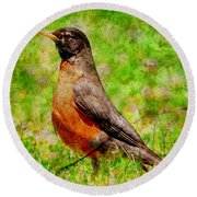 Round Beach Towel featuring the photograph The Early Bird . Texture . Square by Wingsdomain Art and Photography