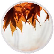 The Eaves Of Season Round Beach Towel