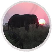 The Elephant And The Sun Round Beach Towel