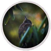 The Eurasian Blackbird Female In Spring Morning Round Beach Towel