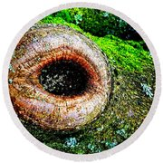 The Eye In The Tree Round Beach Towel