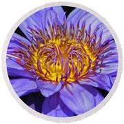 The Eye Of The Water Lily Round Beach Towel