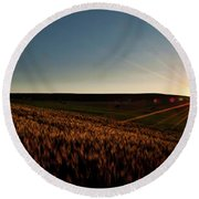 Round Beach Towel featuring the photograph The Field Of Gold by Mark Dodd