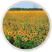 The Field Of Suns Round Beach Towel