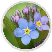 Round Beach Towel featuring the photograph The First Blossom Of The Forget Me Not by William Lee