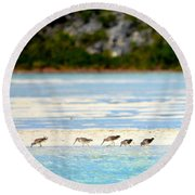 The Five Sandpipers Round Beach Towel