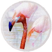 The Flamingo Round Beach Towel by John Kolenberg