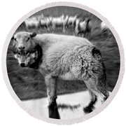 The Flock Is Safe Grayscale Round Beach Towel