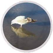 The Flying Narcissus Round Beach Towel