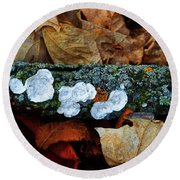 Round Beach Towel featuring the photograph The Forest Floor - Cascade Wi by Mary Machare