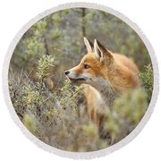 The Fox And Its Prey Round Beach Towel by Roeselien Raimond