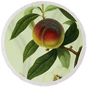 The Galande Peach Round Beach Towel by William Hooker