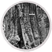 The General Grant Tree Round Beach Towel