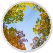 Round Beach Towel featuring the photograph The Glory Of Autumn by Parker Cunningham