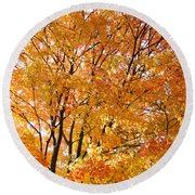 Round Beach Towel featuring the photograph The Golden Takeover by Robert Knight