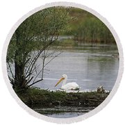 Round Beach Towel featuring the photograph The Goose And The Pelican by Alyce Taylor