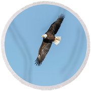 The Great American Bald Eagle 2016-16 Round Beach Towel
