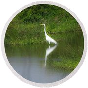 Great Egret By The Waters Edge Round Beach Towel