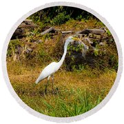 Egret Against Driftwood Round Beach Towel
