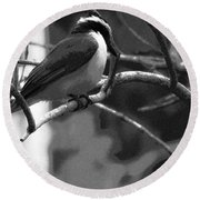 The Great Kiskadee  Round Beach Towel