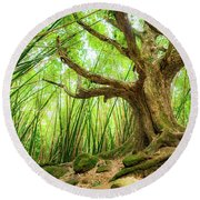 Round Beach Towel featuring the photograph The Great Tree by T Brian Jones