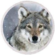 The Grey Wolf Round Beach Towel