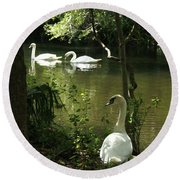The Guard Swan Round Beach Towel