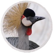 The Headress Crowned Crane Round Beach Towel
