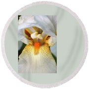 Round Beach Towel featuring the photograph The Heart Of A Bearded Iris by Sheila Brown