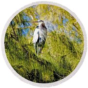 The Heron's Whiskers Round Beach Towel