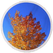 Round Beach Towel featuring the photograph The Hillside - Panorama by Shane Bechler