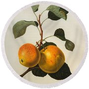 The Kerry Pippin Round Beach Towel by William Hooker