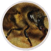 The Killer Bee Round Beach Towel by ISAW Gallery