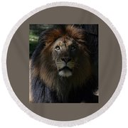 The King In Awe Round Beach Towel by Ronda Ryan