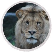 Round Beach Towel featuring the photograph The King by Laddie Halupa