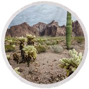 Round Beach Towel featuring the photograph The King Of Arizona National Wildlife Refuge by Margaret Pitcher