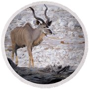 The Kudu In Namibia Round Beach Towel by Ernie Echols