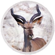 The Kudu Portrait 2 Round Beach Towel by Ernie Echols