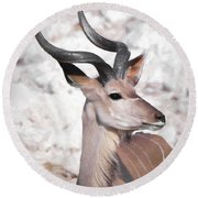 The Kudu Portrait Round Beach Towel by Ernie Echols
