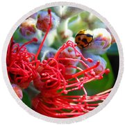 The Ladybug And The Flower Round Beach Towel