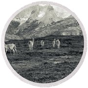 The Lamas Round Beach Towel by Andrew Matwijec
