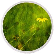 The Last Black-eyed Susan Round Beach Towel