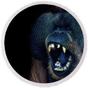 The Laughing Orangutan Round Beach Towel