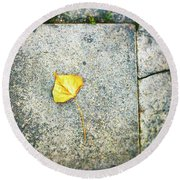 Round Beach Towel featuring the photograph The Leaf by Silvia Ganora