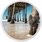 The Life Of A Barnacle Round Beach Towel