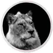 The Lioness Sitting Proud Round Beach Towel