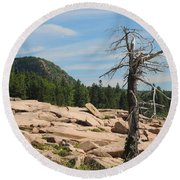Round Beach Towel featuring the photograph The Lone Tree by Living Color Photography Lorraine Lynch