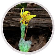The Lone Trout Lily Round Beach Towel